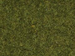 Gras Wiese 2, 5 mm