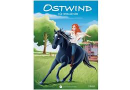 Ostwind Band 2, Die rettende Idee, für Erstleser